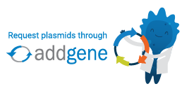 Link to Fan Wang Lab Plasmids